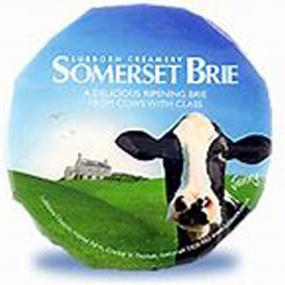 Brie Somerset cheese