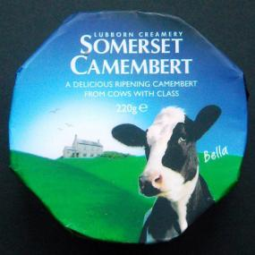 Camembert Somerset cheese